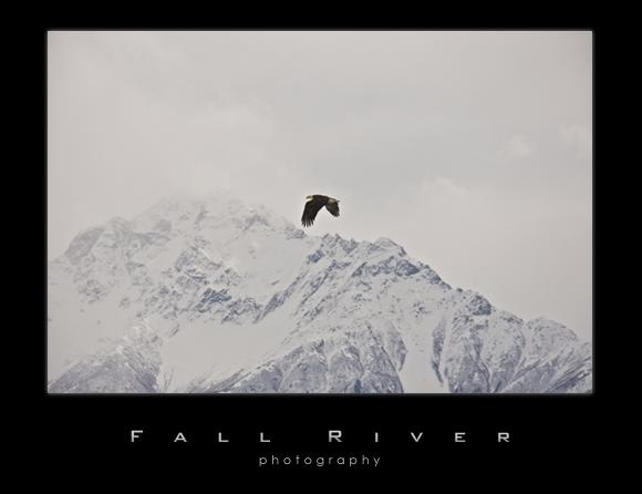 eaglepioneer