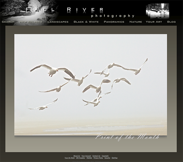 Fall River Photography Fine Art Nature Print of the Month